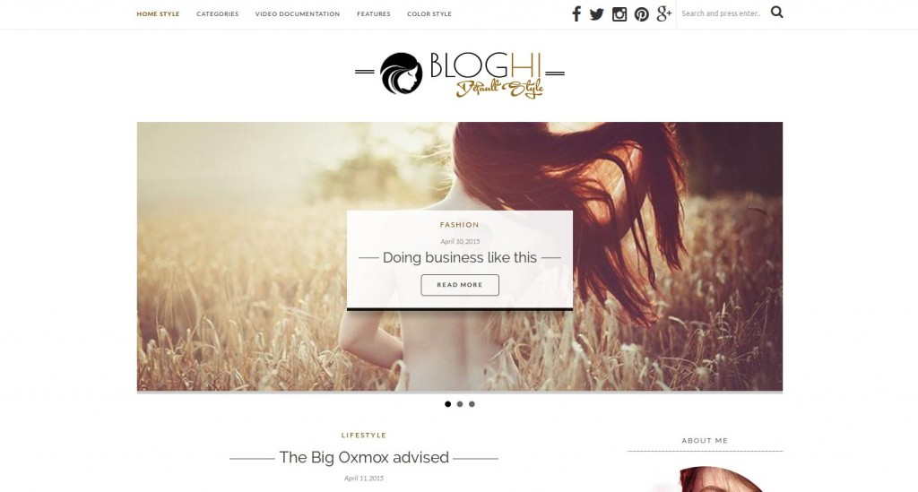 07-bloghi-theme-wordpress-francais
