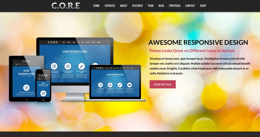 08-core-theme-wordpress-francais